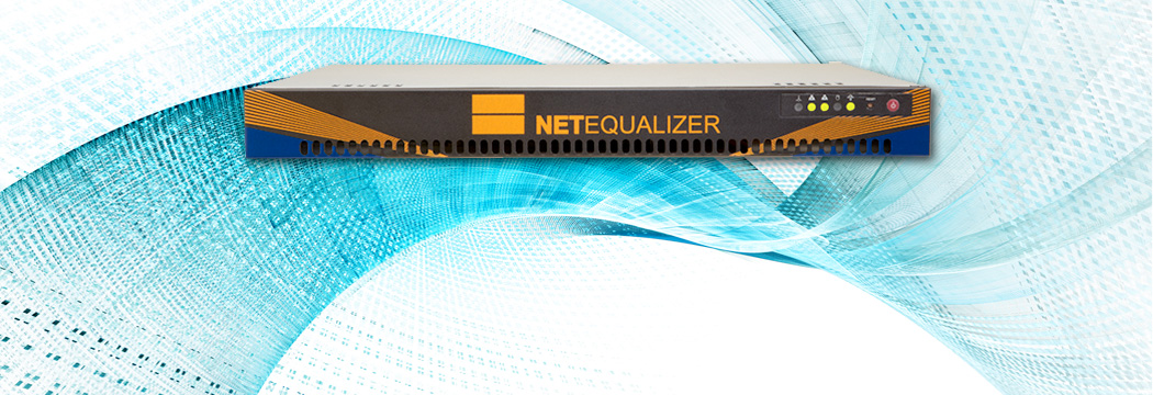 NetEqualizer Caching Option